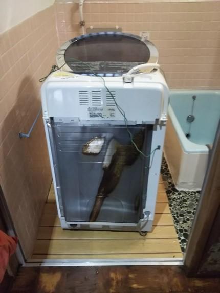 洗濯機ホースから水漏れ