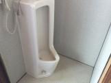 トイレ 黄ばみ 尿石落とし