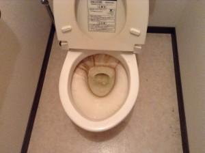 トイレの尿石落とし