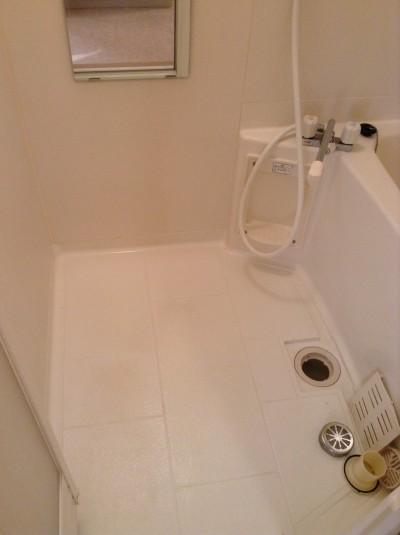 浴室クリーニングカビ除去