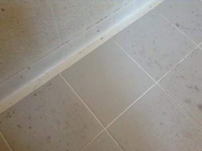 浴室床の黒ズミ落とし