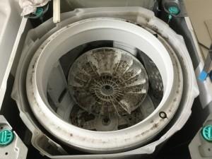 洗濯機1年以上分解洗浄していないものを分解してみるとカビとヌメリがびっしりです。