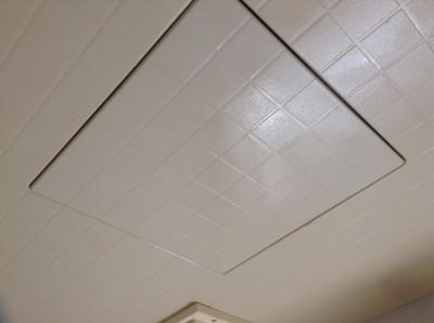 浴室 天井 カビ除去