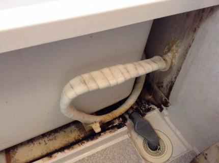 浴室エプロン内部 高圧洗浄