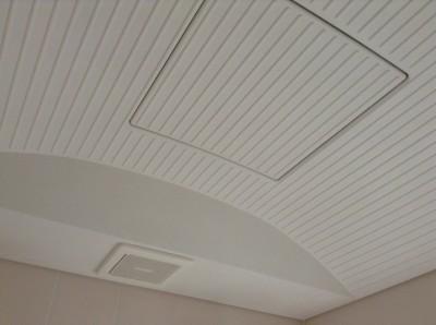 天井カビとり