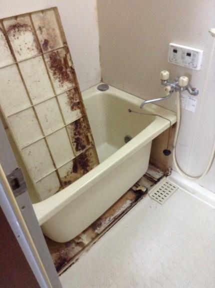 カビ除去お風呂掃除