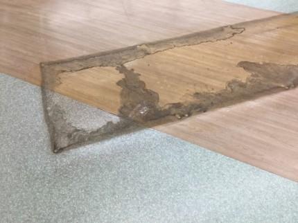 店舗の床ハクリ洗浄ワックス