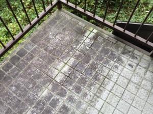 玄関タイルのコケ落とし