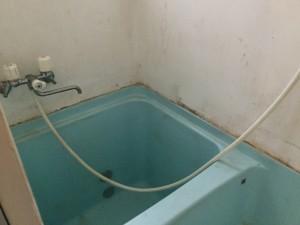 浴室のカビ落とし