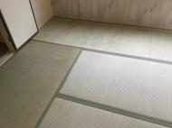 畳のカビ除去 防カビ処理