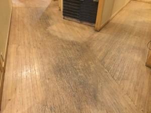 店舗床洗浄
