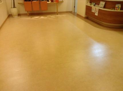 床のハクリ洗浄ワックスです。定期的にはワックス掛け。年1回はハクリ。そんな段取りでキレイな床を維持して下さい!