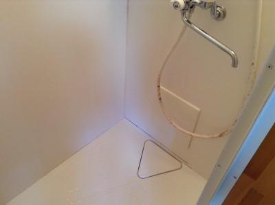 シャワールームのカビ落とし
