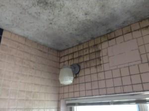 お風呂場のタイル壁 カビ除去
