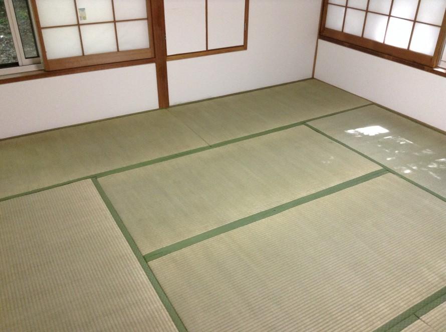 畳の白カビクリーニング
