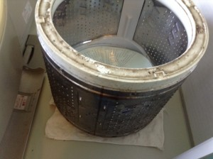 洗濯槽内の汚れ