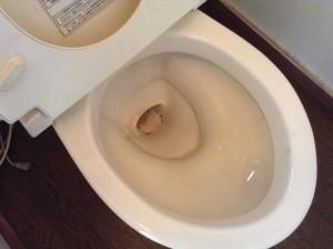 トイレ 黄ばみ除去 輪ジミ除去