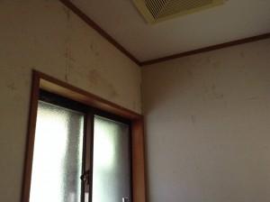 トイレクリーニング 部屋全体模様替え