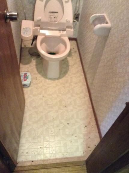 別荘トイレのクリーニング