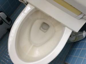 トイレ尿石落とし