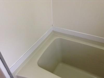 カビだらけの浴室のクリーニング方法