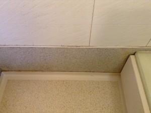 浴室コーキングカビ除去