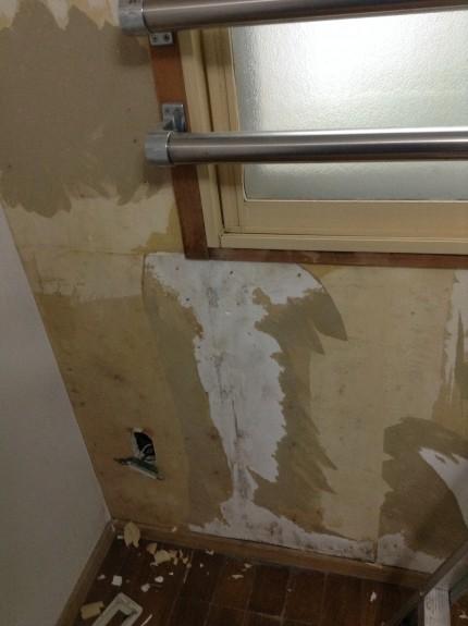 壁のカビ除去
