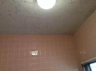 お風呂の天井カビ落とし