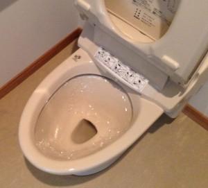 トイレの便器の黒ずみ落とし