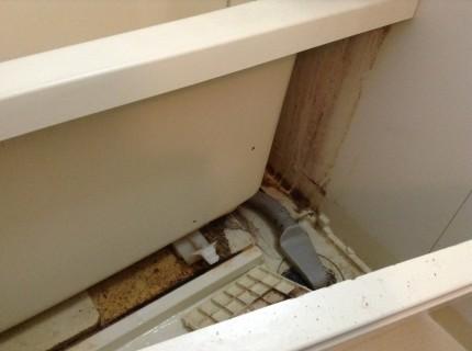 バスタブ内部を外して洗浄する。