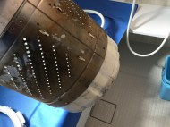 洗濯機ドラム内カビ