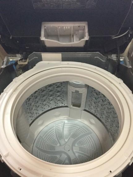 洗濯機のドラムの中はカビだらけということをご存じでしょうか?