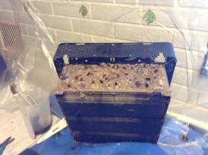 換気扇分解にて地蜂の巣が出てきた