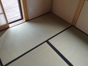 畳のカビ汚れ