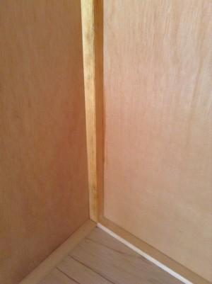 収納の白木カビ除去