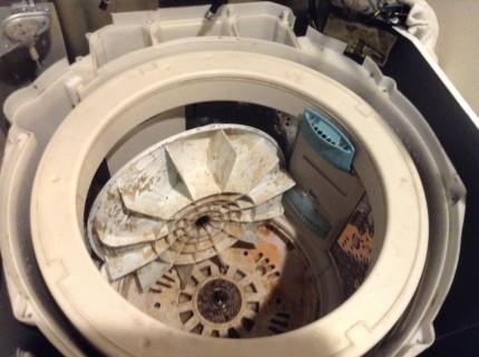 一年後の洗濯機汚れ状態とは