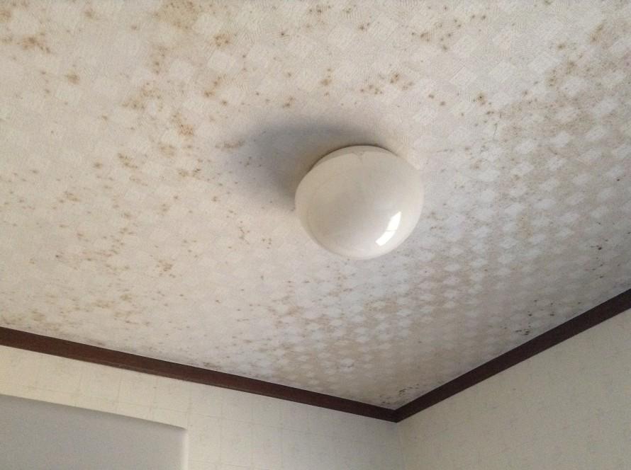 天井クロス張替