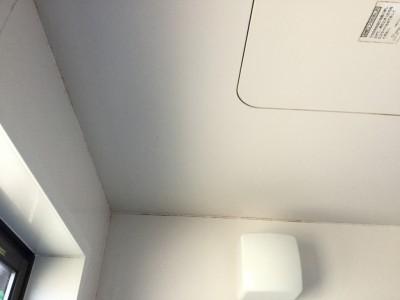 浴室天井のカビ落とし