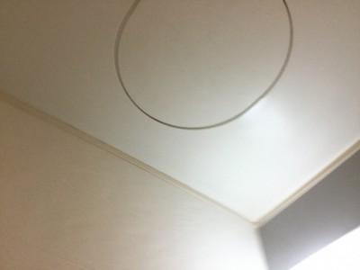 天井黒カビ落とし